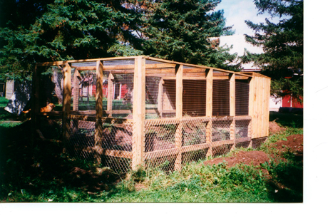 Woodchuck enclosure